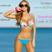 Dj Silviu M - Summer is Here ! Part.2 (Promotional Mix)